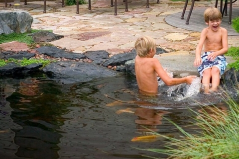 Benefits of Ecosystem Swimmable Backyard Ponds from Great Lakes Pondscapes