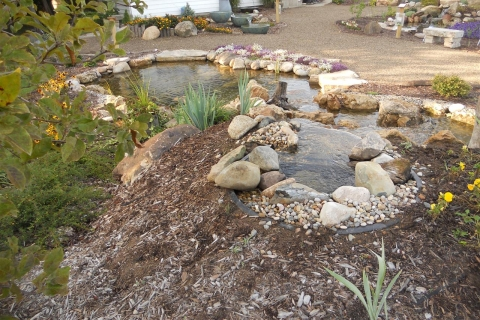 The Two Basic Pond Design Considerations for Your Backyard Pond