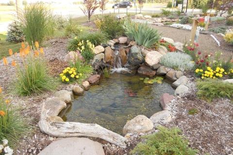 Healthy Backyard Pond L Great Lakes Pondscapes