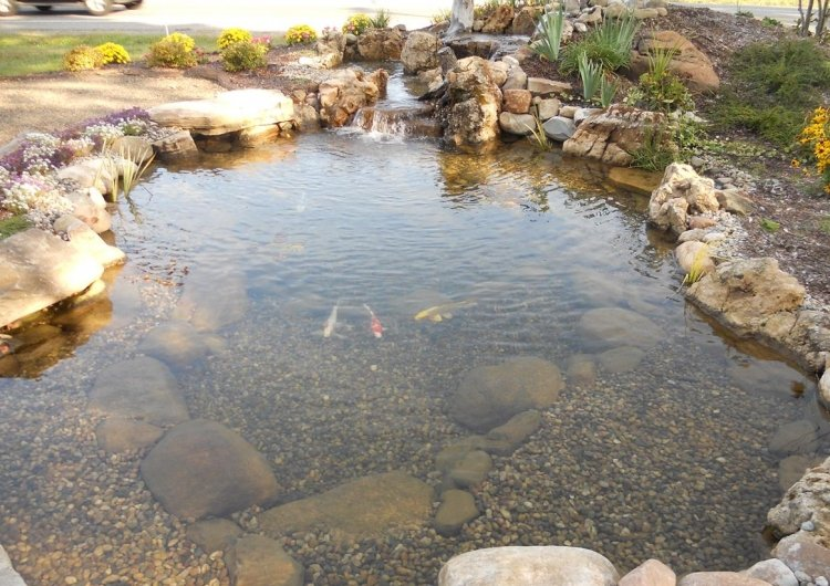 Great lakes pondscapes backyard ponds pond design and for Small pond equipment