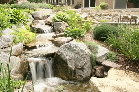 Ways You Can Renovate Your Backyard Pond this Spring