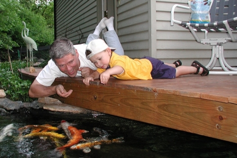 4 Things You Need to Consider Before You Build a Koi Pond