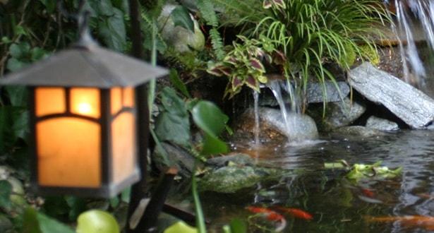Pond Accessories - Ponds Backyard Ponds & Pond Design