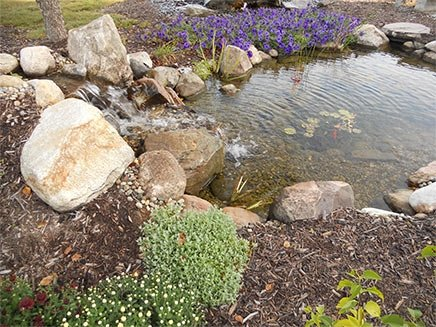 Ponds - Great Lakes Pondscapes Backyard Ponds, Pond Design, And Pond Supplies