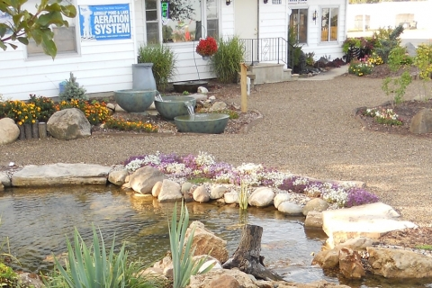 Getting Your Yard and Backyard Pond Ready for Spring